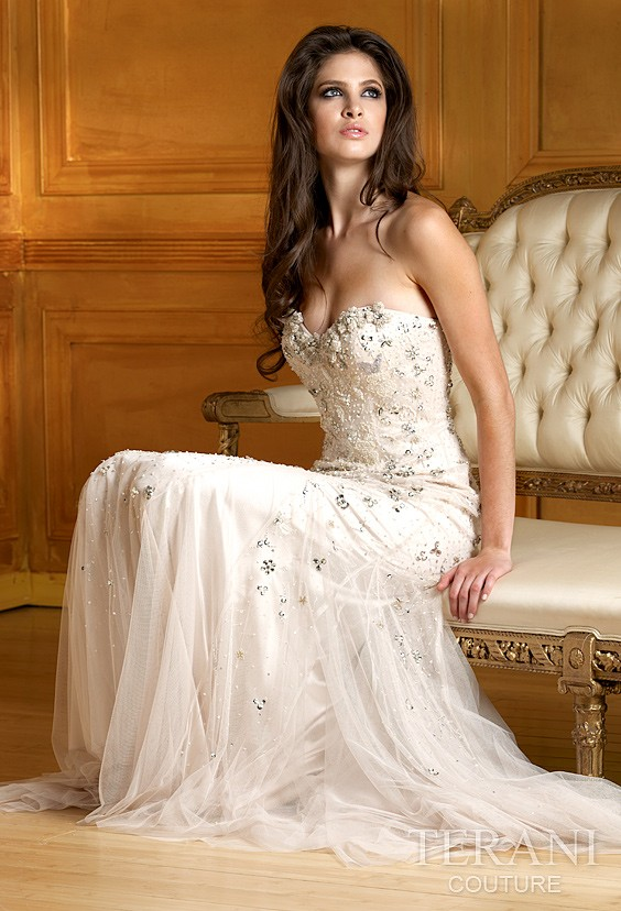 terani wedding dresses high speed ground transportation
