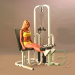 Muscle Dynamics Maxicam 6014 Leg Extension Machine