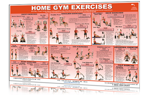 Chart Home Gym Exercises