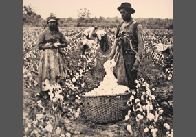 slavery cause racism Racism in the united states has major racially and ethnically structured institutions included slavery the physiological stress caused by racism has.