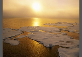 Do you believe in global warming?!?