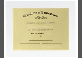 participation awards