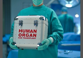 legalizing the sale of human organs