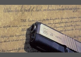 Repeal the second amendment essay
