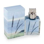 Calvin Klein Eternity SUMMER For Men 3.4 oz