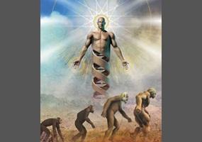 creation vs evolution which makes more sense