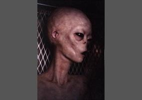 Are aliens real?   Debate.org
