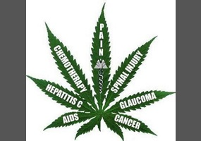 should marijuana be legalized for medical purposes essay