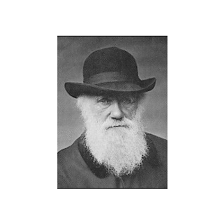 a study of the life and works of charles darwin Much of charles darwin's groundbreaking work as an evolutionary biologist stemmed from his study of birds charles darwin's life with birds.