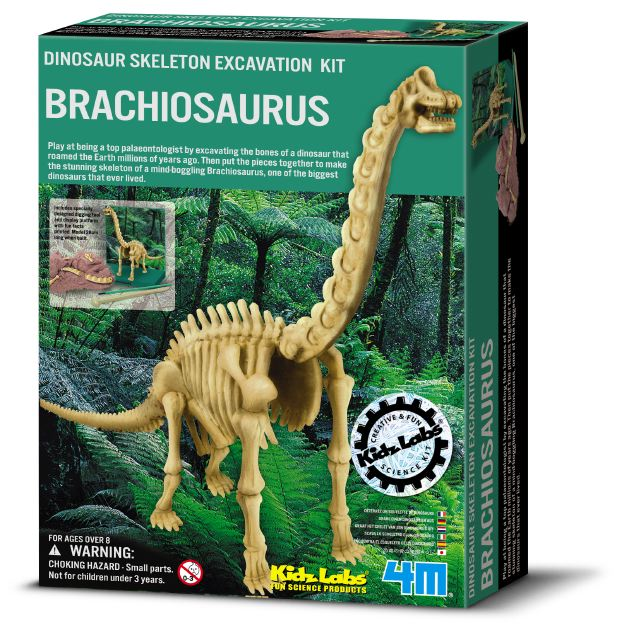 Dinosaur Skeleton Excavation Kit - Brachiosaurus! | Science Kits ...