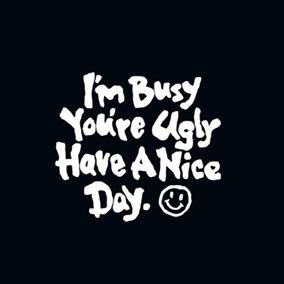 diy i m busy you re ugly have a nice day c 39 est clairette. Black Bedroom Furniture Sets. Home Design Ideas
