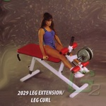 Muscle Dynamics Maxicam (2029) Plate Loaded Leg Extension/Curl