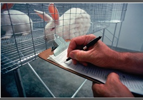 should animals be used for medical research The suffering of animals used in medical research is not contested, although the scale of it often is medical advances should be weighed up against the delays and tragedies caused by reliance on animal experiments – the thalidomide disaster whereby tens of thousands of children were born with.