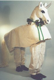 Adult Unicorn costume rental