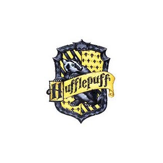 what hogwarts house am i in