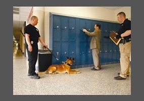 do schools have the right to search students lockers essay Pdf version: privacy in schools: dogs, lockers,  that students do have a diminished expectation of privacy  of the school's right to search lockers .