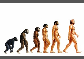 Evolution: real or a theory?