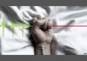 Why active euthanasia and physician assisted suicide should be legalised
