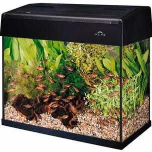 eclipse 5 gallon fish tank filter - Eclipse Hexagon 5 ...