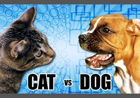debate opening for dogs are better than cats Dogs are better pets than cats formal debate this essay dogs are better pets than cats formal debate and other 64,000+ term papers, college essay examples and free essays are available now on reviewessayscom.