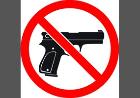 america should have stricter gun control Us president donald trump has endorsed stricter gun control  it should have  been one school shooting and we should have fixed it and i'm.