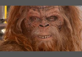Is Bigfoot real?   Debate.org