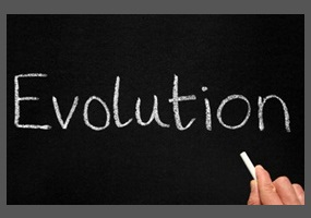 evolution should be taught in schools Evolution should not be taught as science in our school  i hereby petition that if the theory of evolution is to be taught in schools,  petition2congress,.