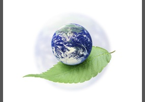essay on environmental protection and economic development