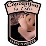 Conception is Life Pin - Eleven Weeks