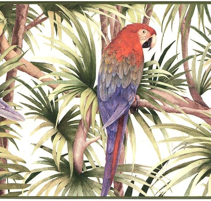 Birds free Wallpaper Photos: Bird Wallpaper Border