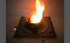 essay answer is hell endothermic or exothermic