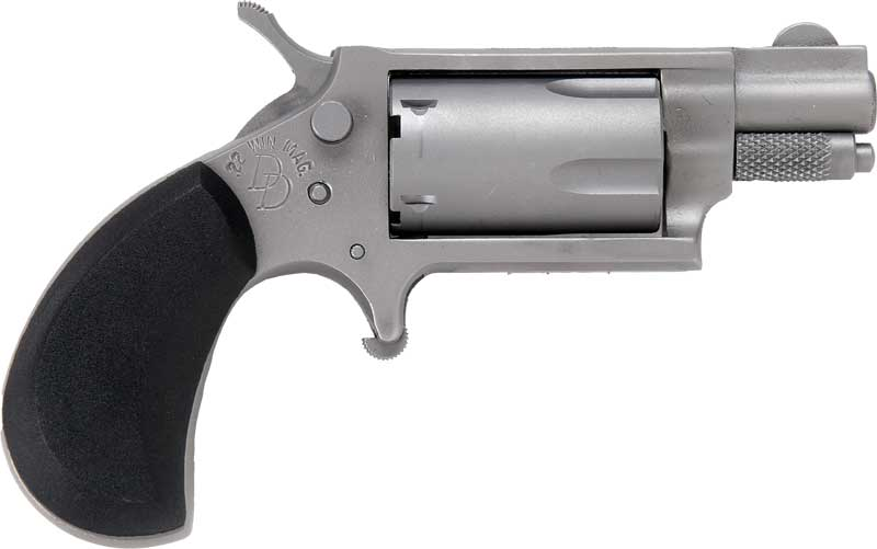 charter arms  22 mag dixie