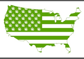an argument against the legalization of marijuana in the united states Review opinions on the online debate the legalization of marijuana in the united states would benefit all americans.